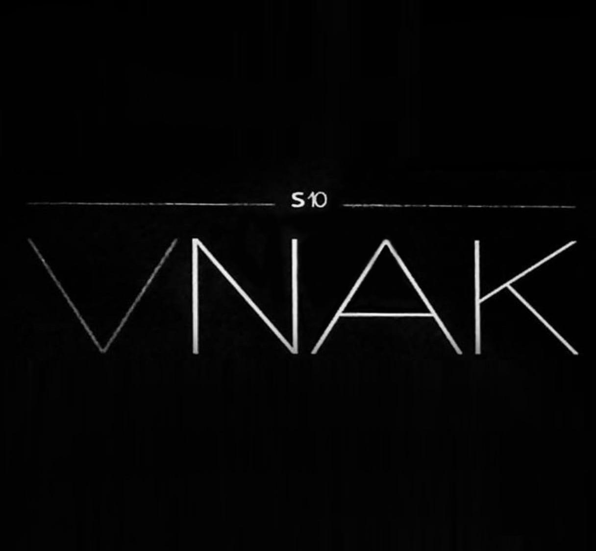 logo VNAK estilistas Laser Sapphire