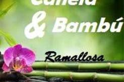 Canela y Bambu Estetica Laser Sapphire